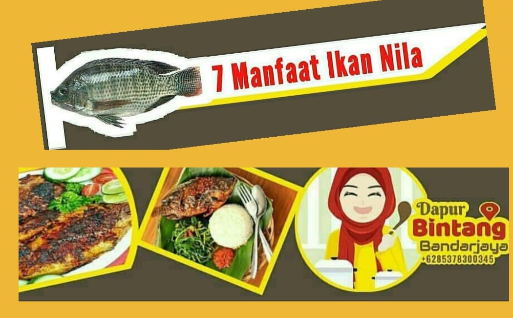 Dapur Bintang: 7 Manfaat Ikan Nila