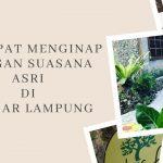 3 Tempat Menginap dengan Suasana Asri di Bandar Lampung