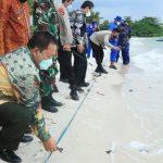 Gubernur Lampung dan Gubernur Babel Lepasliarkan Tukik di Pantai Tanjung Kelayang