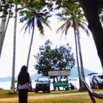 Barisan Pohon Kelapa dan Suara Ombak di Pantai Ketapang